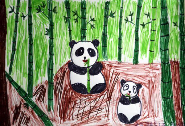 保护大熊猫