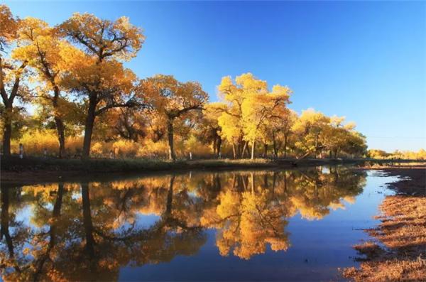 水粉风景画树和小路