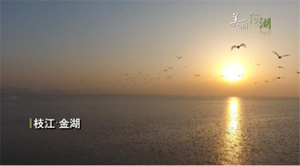 """宜昌努力打造""""金湖""""名片  為綠色發展""""添磚加瓦""""1380.png"""