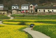 夷陵:乡村游媒体推介会在武汉举行
