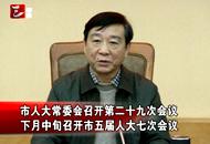 宜昌市人大常委会召开第二十九次会议