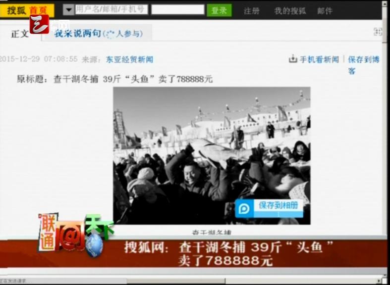 """查干湖冬捕 39斤""""头鱼""""卖了788888元"""
