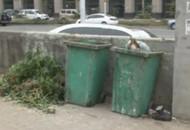 """垃圾堆""""顽疾""""被根治 山坡将种植花草"""