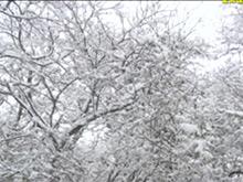 兴山多地普降大雪