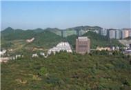 点军区:加快建设滨江生态新城区