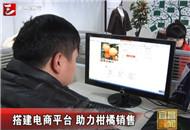 宜昌搭建电商平台 助力柑橘销售