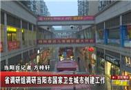 省调研组调研当阳市国家卫生城市创建工作