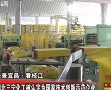 湖北三宁化工被认定为国家技术创新示范企业