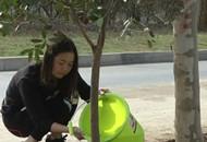 """放眼绿色生态 宜昌新区种下""""医护林"""""""