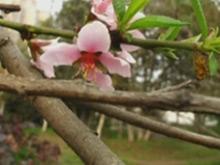 宜昌市疾控中心发布四月份健康提示