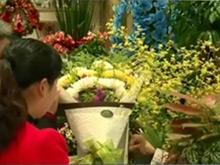 南京文明祭扫 鲜花代替鞭炮纸钱