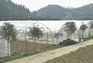 高岩村:蔬菜养殖旅游 三驾马车驱动致富