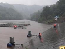 远安拆除网箱养鱼设施 确保水库安全度汛