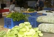 菜价已缓慢回落 预计9月降至同期水平