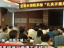 宜昌市国税系统举行党建工作培训