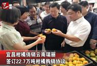 宜昌柑橘俏销云南瑞丽 签下17.6亿元大单