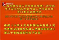 关于设立宜昌市第六届人民代表大会专门委员会的决定