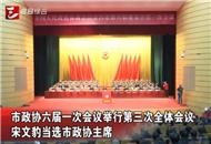 市政协六届一次会议举行第三次全体会议