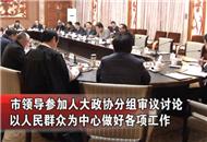 市领导参加人大政协分组审议讨论