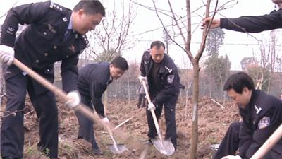 市领导参与义务植树活动